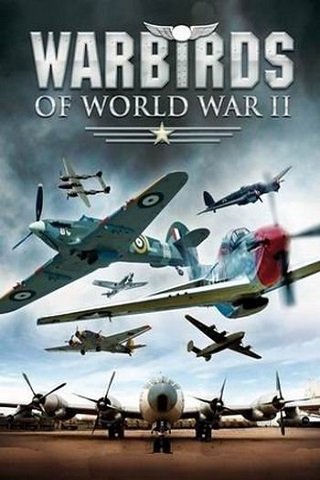WarBirds - World War II Combat