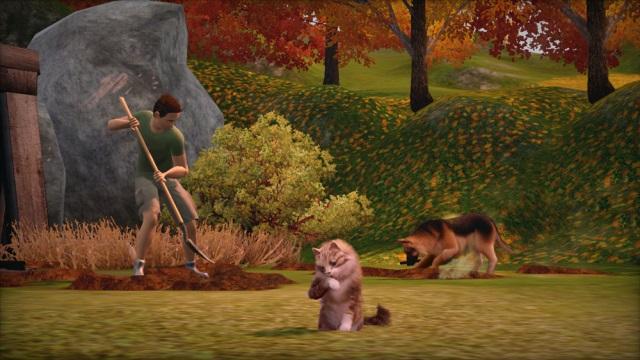 Компьютерная игра the sims 3 * симс 3 *: питомцы | скачать бесплатно.